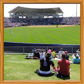 New York Mets Spring Training